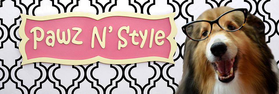 pawznstyle header image with logo and dog wearing glasses